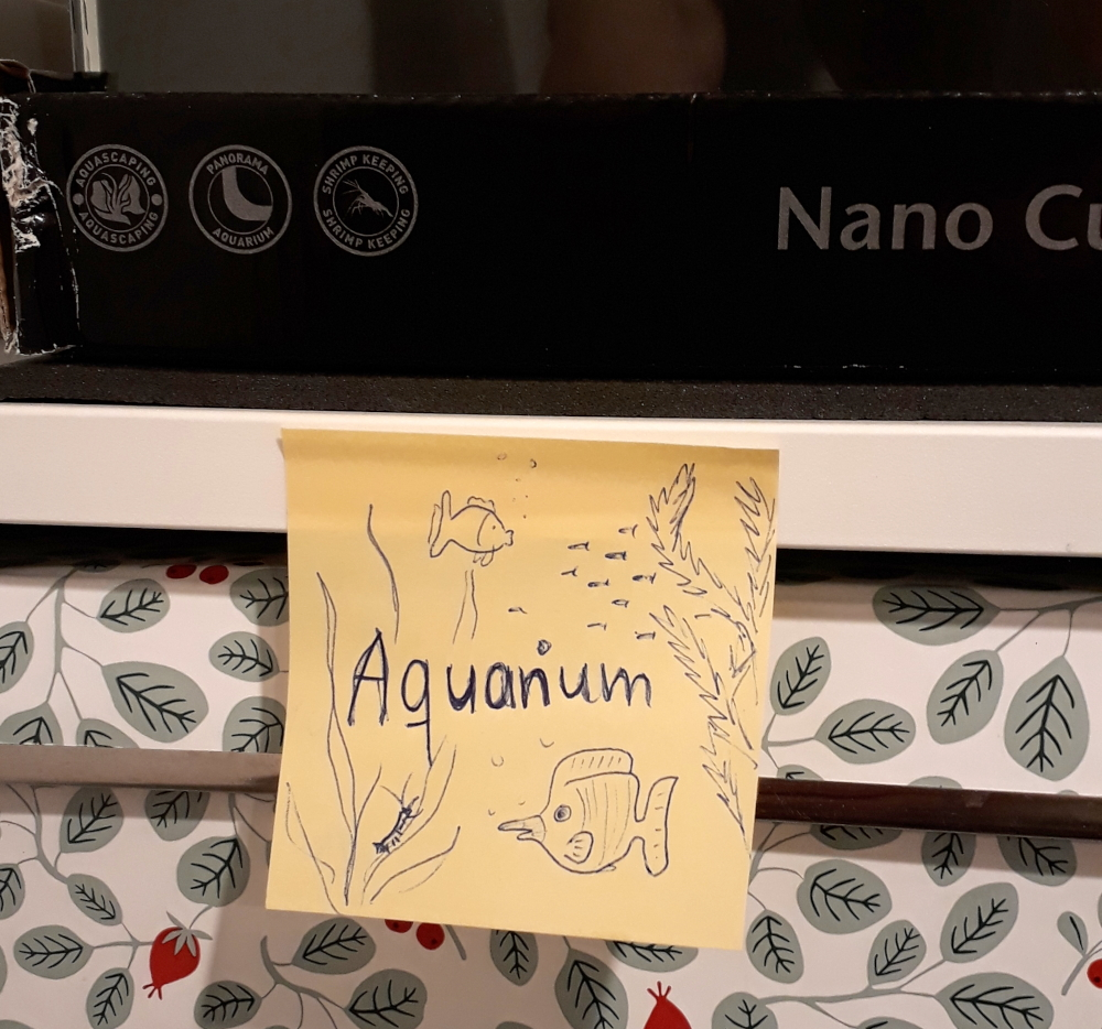 Platzhalter-Zettel für das neue Aquarium