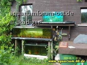Rüdigers Gartenaquarien 2009