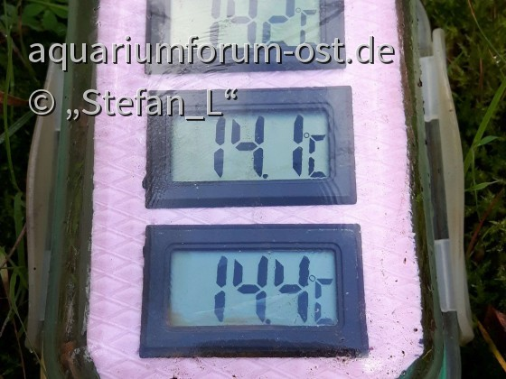 Teichthermometer_0